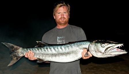 Large 14 kg baracuda